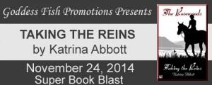 SBB Taking the Reins Tour Banner copy